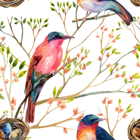 tufted: Watercolor birds on the blossoming trees. Hand painted seamless pattern Stock Photo