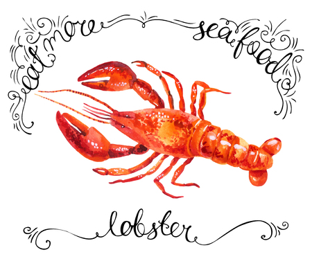 watercolor lobster isolated on white background with lettering. Hand painted illustration Imagens