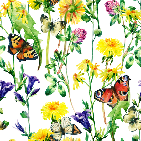 Meadow watercolor flowers and butterfly seamless pattern. Watercolor wild bellflowers, dandelion, daisy, weeds and herbs background with butterfly. Hand painted natural illustration Stock Photo