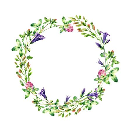 Watercolor wild flowers wreath. Bell flower, clover, weeds and meadow herbs. Watercolor wild field wreath. Hand painted floral illustration