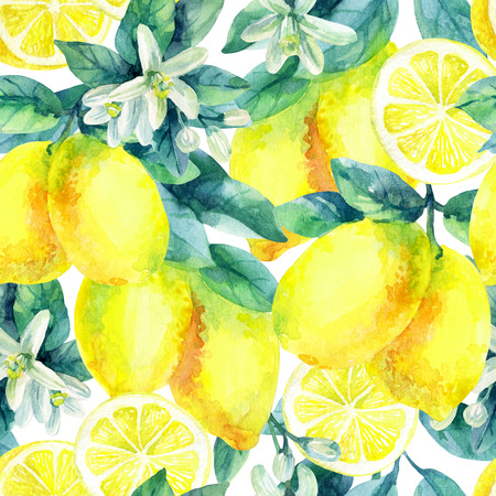 Watercolor lemon fruit branch with leaves seamless pattern on white background. Lemon citrus tree. Lemon branch and slices. Lemon branch with leaves. Hand painted illustration