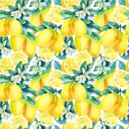 白い背景の上の葉のシームレスなパターンと水彩レモン果実枝。レモンの柑橘類の木。レモン支店とスライス。レモンの葉で分岐します。手描きのイラスト 写真素材 - 73394204