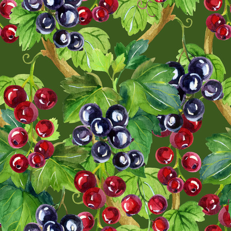Watercolor red and black currants seamless pattern on green background. Hand painted illustration
