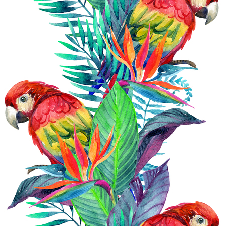 macaw: watercolor parrots with tropical flowers seamless pattern. Exotic background. Hand painted illustration of parrots in natural colors on white background