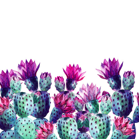 Watercolor cactus card on white background. Hand painted illustration