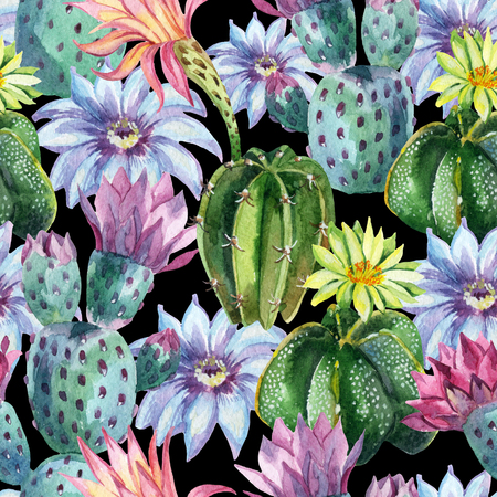 Watercolor seamless cactus pattern. Hand painted background Stock Photo