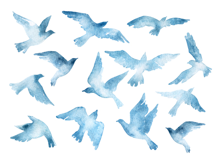 Flying bird silhouettes with watercolor texture isolated on white background. Hand painted natural illustration Stock Photo