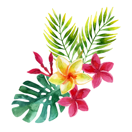 plumeria flowers and tropical leaves in watercolor Stock Photo