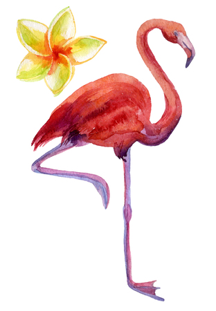 Watercolor illustration of pink flamingo and exotic flower Stock Photo