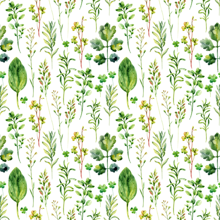 weeds: Watercolor meadow weeds and herbs seamless pattern. Watercolor wild field herbs background. Hand painted illustration