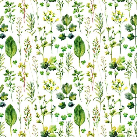 水彩牧草地雑草とハーブのシームレスなパターン。水彩野生ハーブ背景。手描きのイラスト