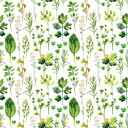 Watercolor meadow weeds and herbs seamless pattern. Watercolor wild field herbs background. Hand painted illustration