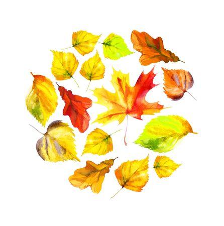 aspen leaf: Watercolor autumn leaves background. Raster illustration