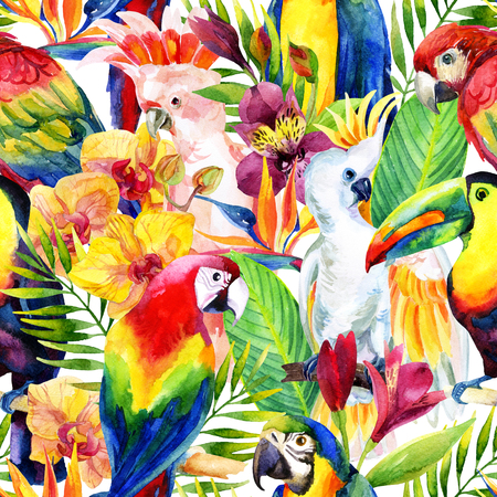 macaw: watercolor parrots with tropical flowers seamless pattern. Exotic background. Hand painted illustration of different species of parrots in vivid colors Stock Photo