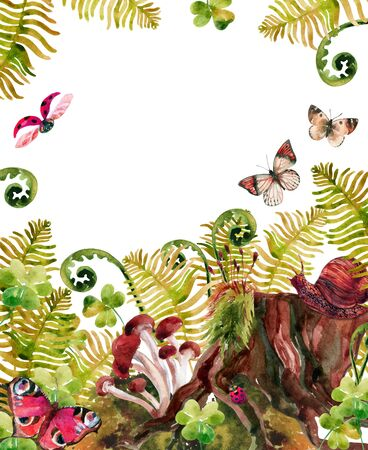 undergrowth: Forest watercolor background. Woods stump, mushroom, leaves, moss, lady bug and butterfly. Watercolor natural woods life card. Hand painted forest wildlife illustration