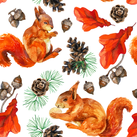 Watercolor forest seamless pattern. Hand painted squirrels, acorn, cone, oak leaves and pine branches on white background.