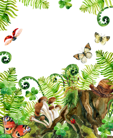 marsh: Forest watercolor background. Woods stump, mushroom, leaves, moss, lady bug and butterfly. Watercolor natural woods life card. Hand painted forest wildlife illustration