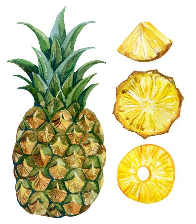 Conjunto acuarela piña. Ilustración pintada a mano Foto de archivo - 77066796