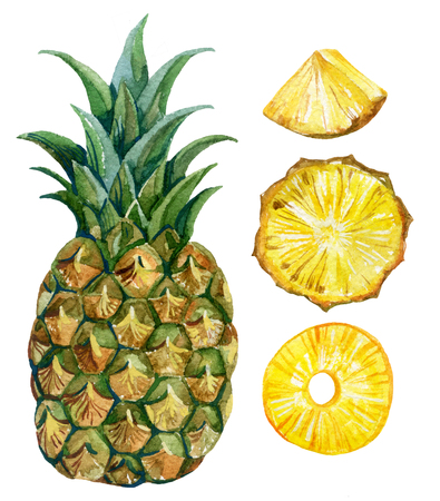watercolor pineapple set. Hand painted illustration Zdjęcie Seryjne