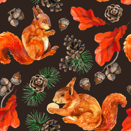 Watercolor forest seamless pattern. Hand painted squirrels, acorn, cone, oak leaves and pine branches on brown background. Stock Photo - 77580568