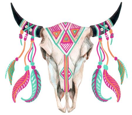 watercolor buffalo skull, hand painted illustration