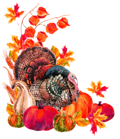 Turkey bird with harvest. Thanksgiving card. Watercolor hand painted illustration Stock Photo