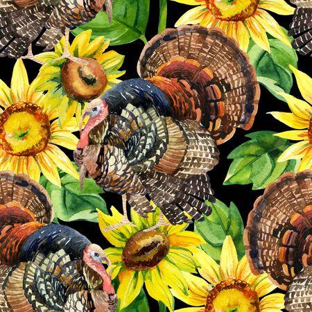 gamebird: Turkey bird with sunflowers illustration. Watercolor turkey seamless pattern on the black background Stock Photo