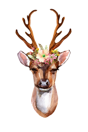 Watercolor deer head with flowers, leaves and herbs - front view. Hand painted illustration