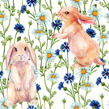Rabbit among flowers. Watercolor meadow seamless pattern with bunny, chamomiles and cornflowers. Hand painted illustration Stock Photo