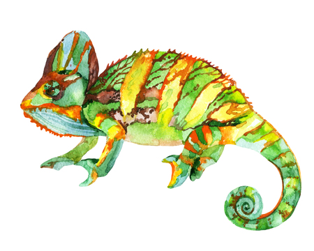 Watercolor chameleon illustration