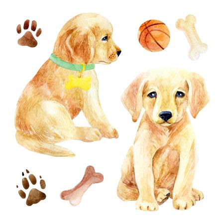 Labrador retriever pup set. Twee puppy's met speelgoed. Handgeschilderde honden aquarel illustratie, geïsoleerd op een witte pagina