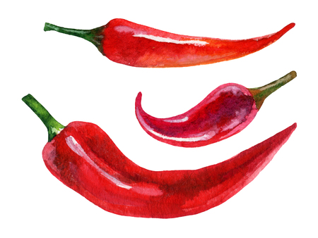 cayenne: Watercolor set of red chili pepper, hand painted illustration Stock Photo