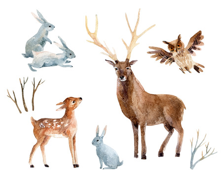 Watercolor deer with fawn, rabbits, birds isolated on white background. Wild forest animals set. Hand painted winter illustration