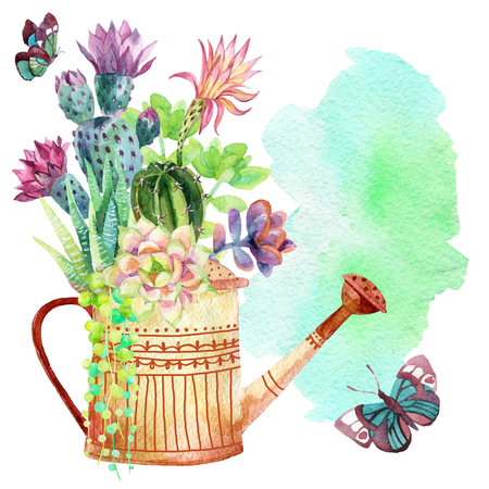 Watercolor succulents, watering can and butterflies on watercolor stain background. Hand painted illustration