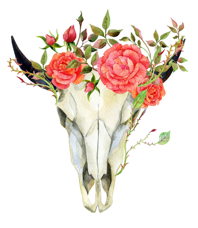watercolor buffalo skull with roses, hand painted illustration