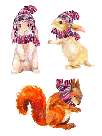 Rabbit and squirrel with winter hat and scarf. Cute bunny in cozy knitted clothes. Red squirrel in knitted scarf. Forest animals set. Watercolor winter background