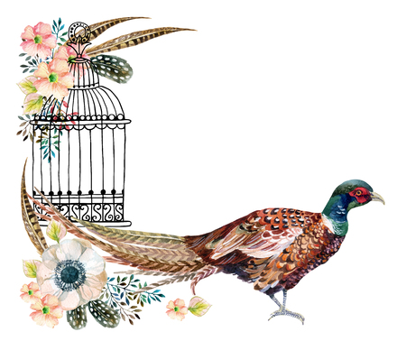 Watercolor Swinhoe pheasant card. Hand painted illustration with Anemones, herbs, feathers, pheasant and bird cage
