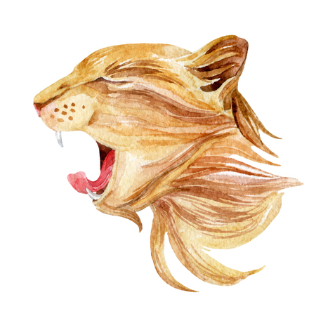 longhaired: Roaring cat. Watercolor cat head. Hand painted illustration Stock Photo