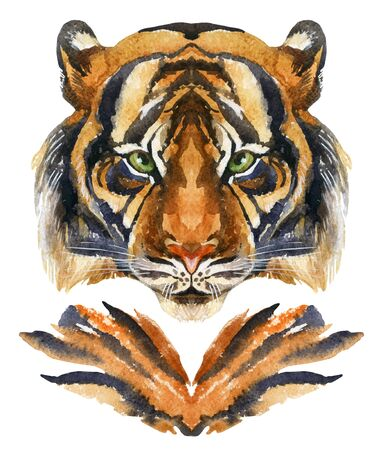 Tiger head. Hand painted watercolor illustration isolated on white background