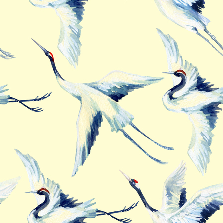 Watercolor asian crane bird seamless pattern. Hand painted traditional illustration Stock Photo