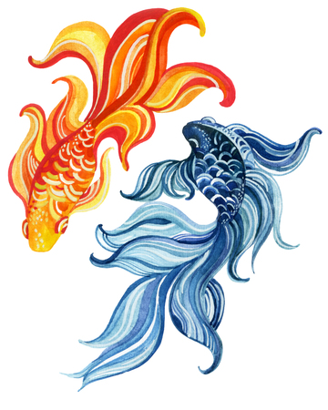 Watercolor asian goldfishes. Yin and yang concept. Hand painted illustration