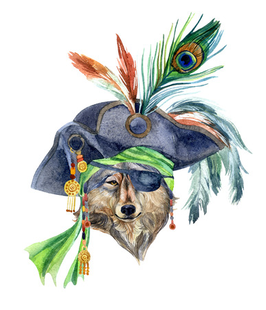 Watercolor wolf in a pirate bandana and a hat with feathers. Portrait of the wolf as a pirate. Hand painted illustration.