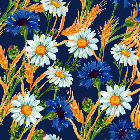 golden daisy: Watercolor meadow seamless pattern with wheat ears, chamomiles and cornflowers . Hand painted illustration on vivid blue background