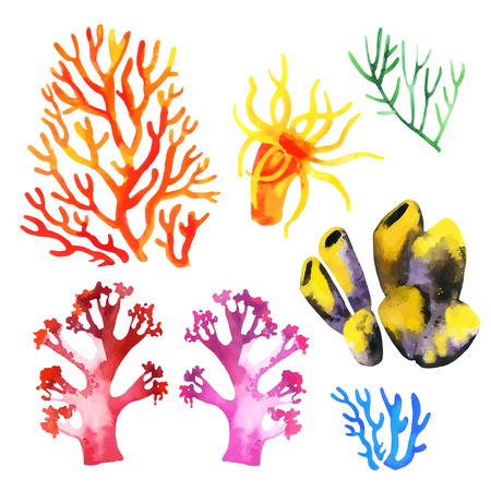 Illustration of the watercolor coral reefs on a white background. Vector illustration Ilustração