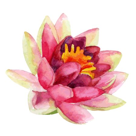 Hand painted lotus flower. watercolor vector illustration