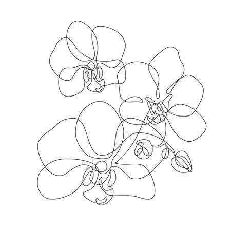 Single Flower Orchid Stock Illustrations Cliparts And Royalty Free Single Flower Orchid Vectors