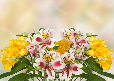 Beautiful bouquet of bright spring flowers on colour background