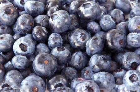 Background of plenty fresh blueberry