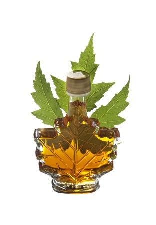 Figured bottle of maple syrup and green leaf