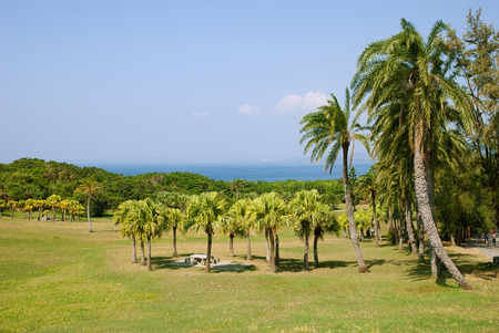 kenting: Palm landscape in Kenting National Park, Taiwan Stock Photo